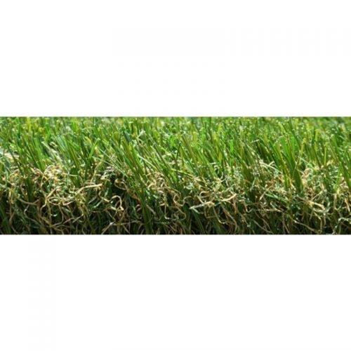 Green Tender Namgrass